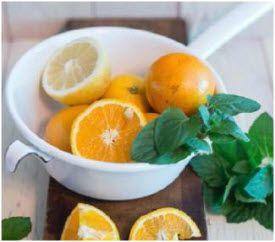 ubrzavanje metabolizma vodom i hranom