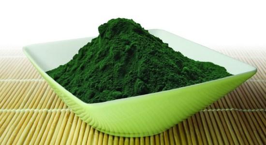 spirulina alge u prahu