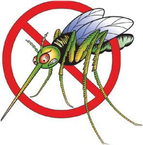 prirodno sredstvo protiv komaraca