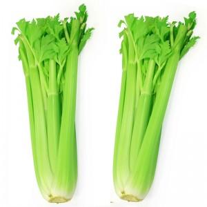 sok od celera priprema
