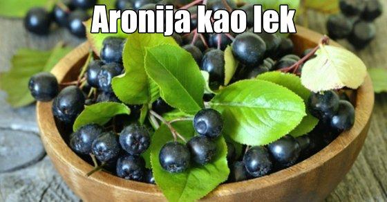 sibirska aronija