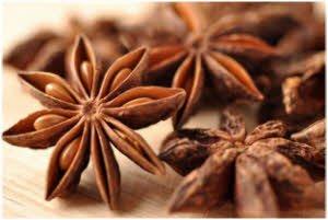 biljka anis kao lek za probavu