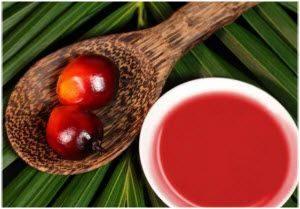 Kako se koristi palmino ulje