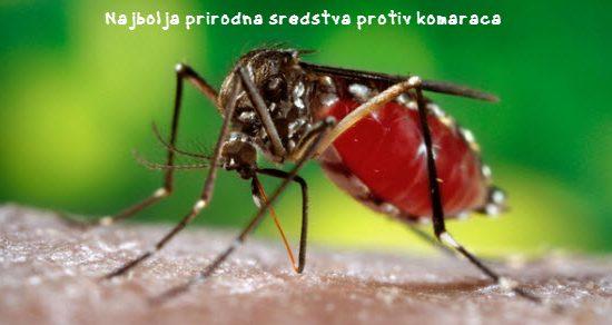 zaštita od komaraca na otvorenom