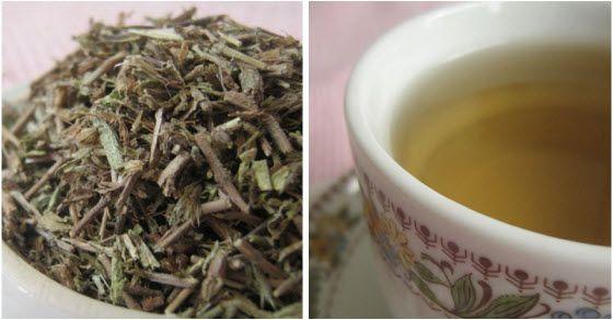 planinski čaj sa Rtnja