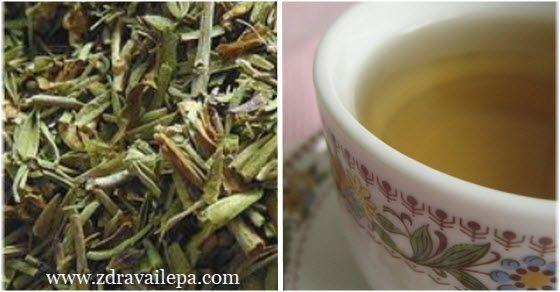 rtanjski čaj kao lek