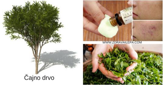 ulje čajnog drveta za negu lica