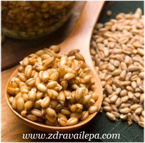 pšenične klice kako se koriste u ishrani ljudi