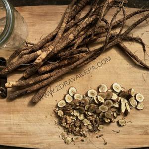 Oman koren u medu koristi se i za respiratorne probleme i za želudčane smetnje