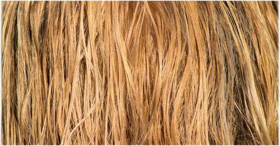 plava boja za kosu skroz prirodna varijanta