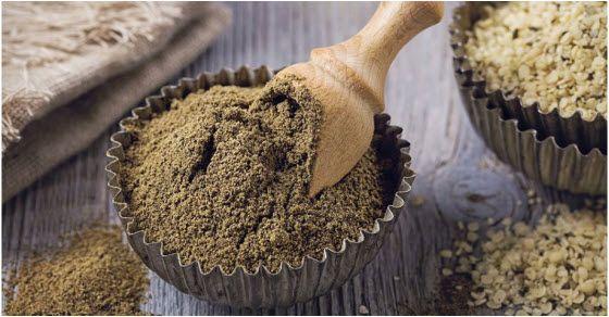 organski konopljin protein u prahu