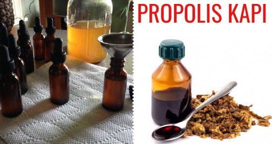 propolis kapi kako se prave